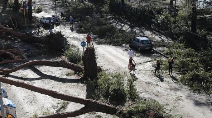 I danni del maltempo nella zona di Firenze Sud (foto Giuseppe Cabras / New Pressphoto)