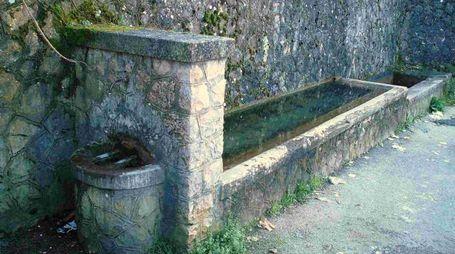 Un fontanile