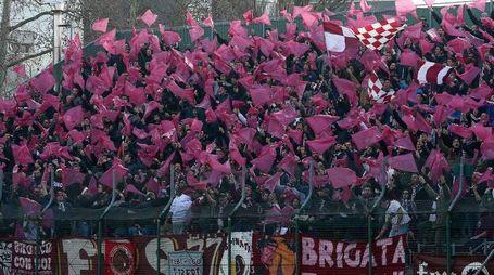 Pesaro,Calcio,Vis Fano,tifo Alma