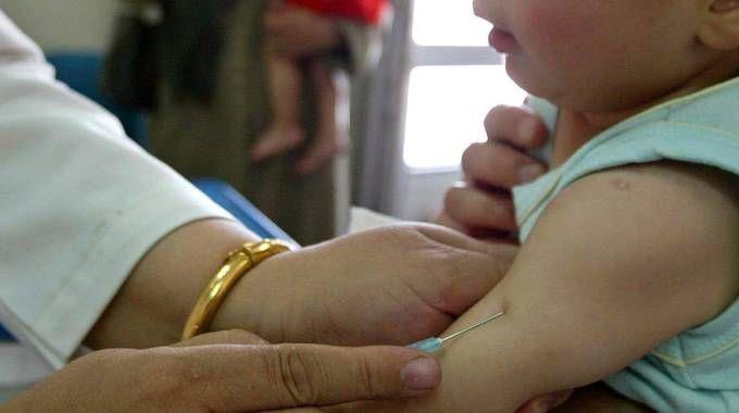 Vaccinazioni, vaccino: foto generica (Ansa)