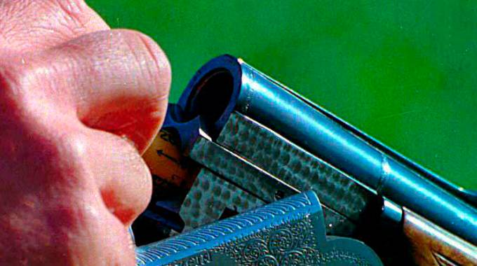 Un fucile (Germogli)