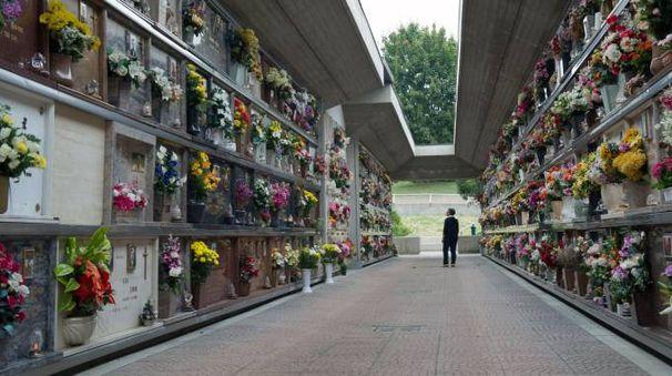 Botte tra fratelli al cimitero