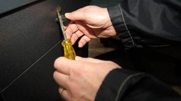 Furti, ladri in azione (Foto di repertorio)