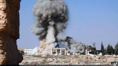 11- Palmira