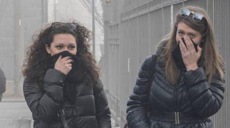 Allarme smog (foto Newpress)