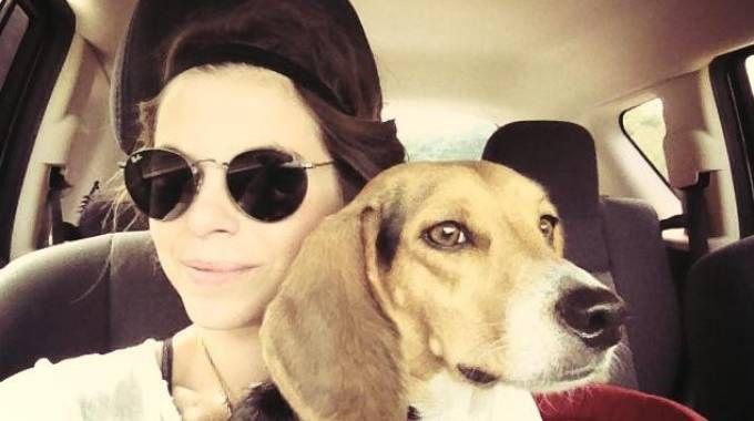 Un'immagine di Ashley Olsen con il suo inseparabile cane beagle, Scout