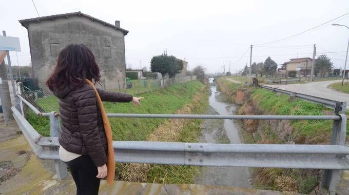 Il punto dove è stato ritrovato il cadavere di Massimo Negrini (Donzelli)