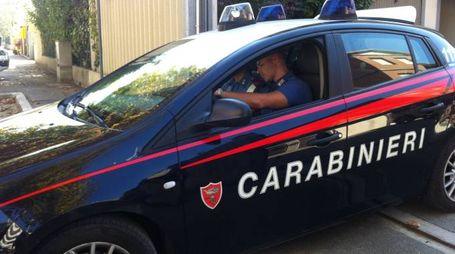 Indagini dei carabinieri (foto repertorio, Mascellani)