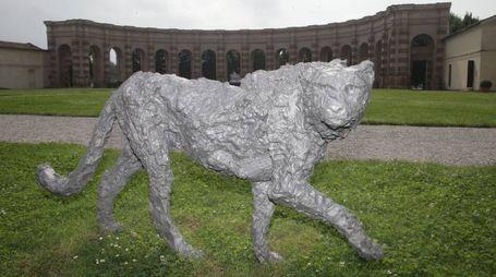 Il ghepardo di Davide Rivalta che, con un orso, un rinoceronte e un cavallo dell'autore decora la città