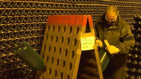 santa maria della versa - Pavia cantine La Versa generiche bottiglie cantine testarossa -  foto torres - foto torres