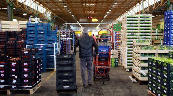 Mercato ortofrutticolo, Castrogiovanni chiede nuovi spazi