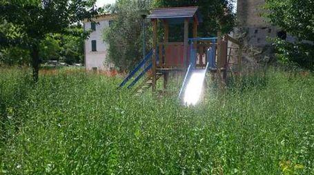 Lo scivolo nascosto nell'erba