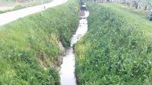 Un'immagine del Rio Gambellara