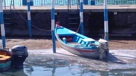 Le macchie di melma comparse nel porto di Sulzano