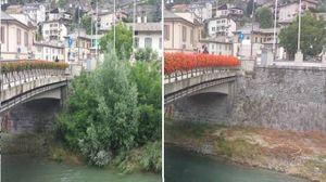 Sondrio, il Mallero prima e dopo la pulizia della vegetazione