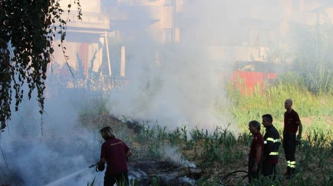 Via delle Barbate, canne e arbusti in fiamme - La Nazione