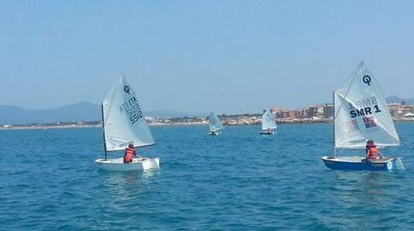 Imbarcazioni optimist a Marina di Grosseto