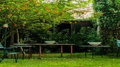 Uno dei giardini nascosti, che da settembre si potranno visitare durante la manifestazione ferrarese