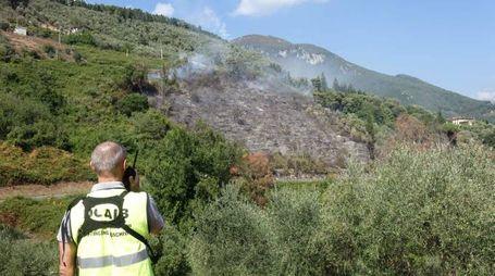 Incendio nei boschi di Camaiore