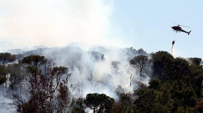 L'incendio sulle colline di Scandicci (Fotocronache Germogli)