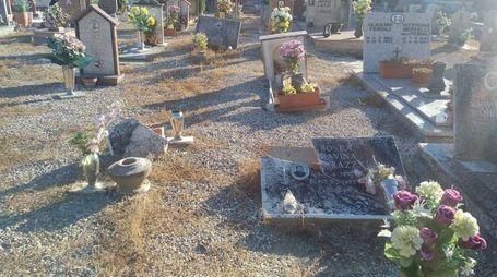 Il cimitero di Vigarano
