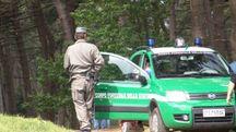 Volontari impegnati nelle ricerche (foto di repertoio)