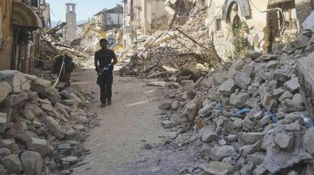 Terremoto, un uomo cammina nel centro di Amatrice (Ansa)