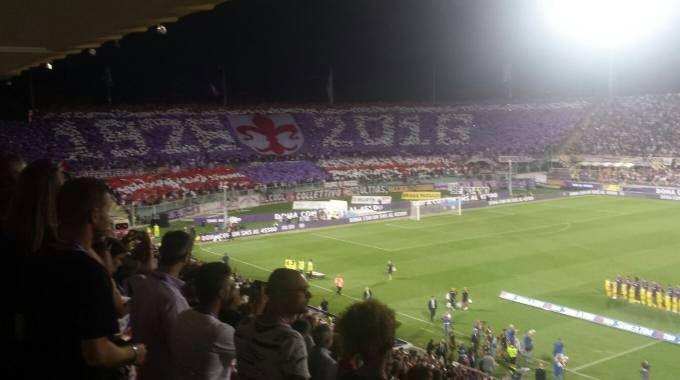 Fiorentina-Chievo, la coreografia a inizio partita