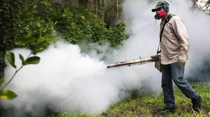 Disinfestazione per combattere la zanzara Zika. Caso sospetto a Calenzano, si attendono le analisi