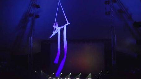 """""""Alis"""", il Gran Galà con i migliori acrobati del mondo"""