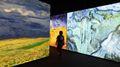 OPERE D'ARTE In programma un lungometraggio  su Van Gogh. Nella foto installazione al Museo Van Gogh