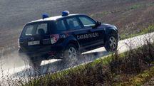 Sono intervenuti i carabinieri di Carpineti e Baiso