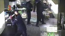 I rapinatori in azione