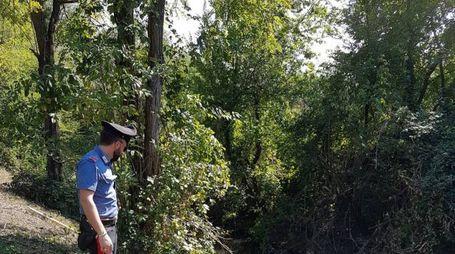 Reggio Emilia, trovato un cadavere in un canale di scolo del torrente Rodano  (Foto carabinieri)