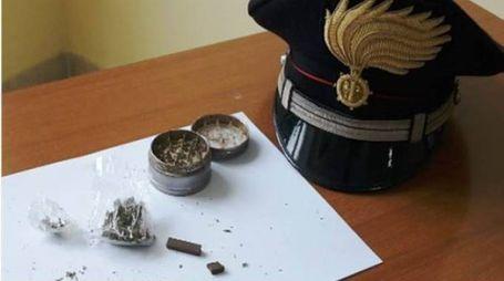 La droga sequestrata dai carabinieri di Busto Arsizio