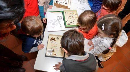 Biblioteca per grandi e piccini a Vinci