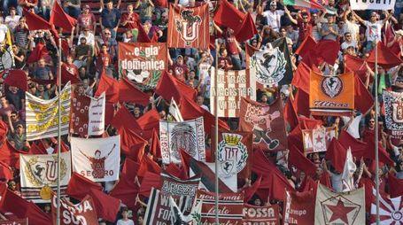 Tifosi dell'Arezzo