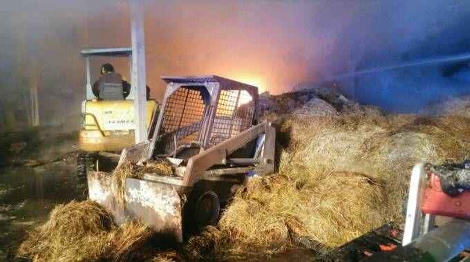Decine di vigili del fuoco sono stati impegnati per domare l'incendio