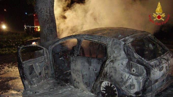 Incidente mortale a Santa Maria dell'Arzilla (Foto Vigili del Fuoco Pesaro Urbino)