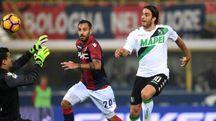 Alessandro Matri realizza il goal del pareggio in Bologna-Sassuolo 1-1 (LaPresse)
