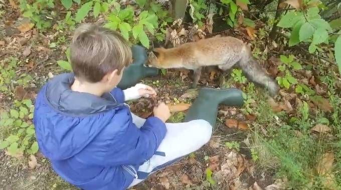 Giacomo insieme alla volpe