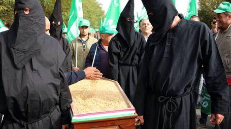 Il funerale del grano italiano