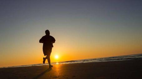12 settimane di sport aerobico elevano il testosterone - foto JG Photography / Alamy