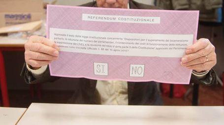Referendum costituzionale, un seggio a Bologna (Schicchi)