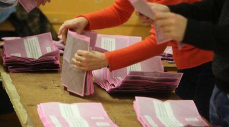 Scrutatori preparano le schede del referendum