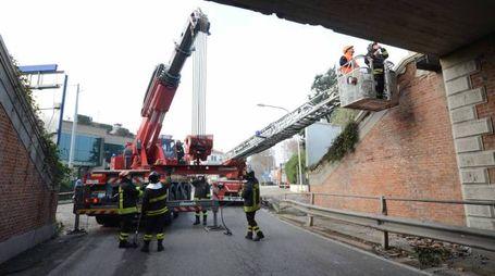 I vigili del fuoco sul luogo dell'incidente (Foto Donzelli)