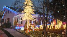Sono soprattutto le famiglie con i bimbi ad accorrere davanti  al giardino delle luci