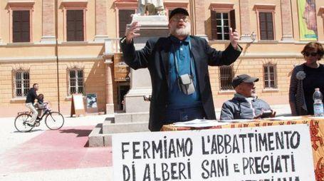 PETIZIONE La raccolta di firme in difesa degli alberi davanti alla Malatestiana animata da Davide Fabbri  (foto Luca Ravaglia)