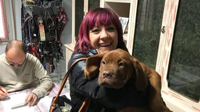 Un cane finalmente 'adottato'