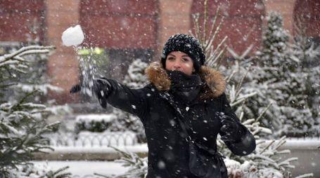 Neve in arrivo nel Forlivese (foto Fantini)
